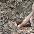 Cu Chi Tunnels Tour Half Day