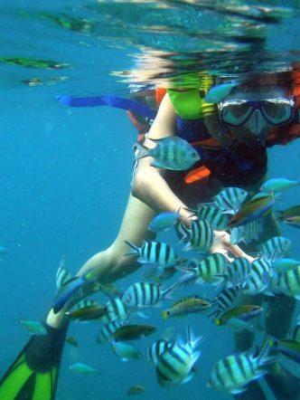 Nha Trang Snorkeling