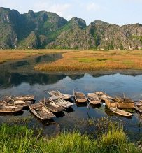 Van Long wetland