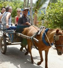 riding horse cart mekong