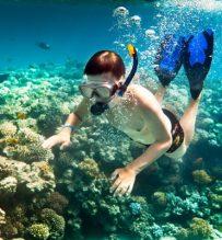 snorkeling cham island