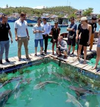 visit fishing farm nha trang bay
