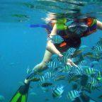 Nha Trang Islands and Snorkeling